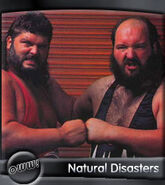 Natural Disasters 1