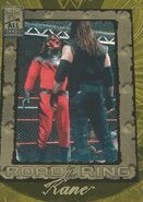 2002 WWF All Access (Fleer) Kane 88