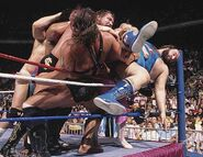Royal Rumble 1990.5