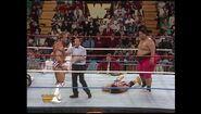 Survivor Series 1993.00029