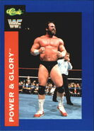1991 WWF Classic Superstars Cards Power & Glory 14