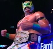 Ultimo Guerrero CMLL World Heavyweight