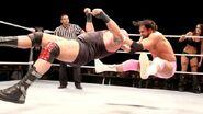WrestleMania Revenge Tour 2013 - Belfast.6