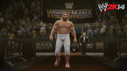 WWE 2K14 Screenshot.77