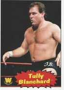 2012 WWE Heritage Trading Cards Tully Blanchard 108