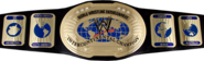 Intercontinental Championship oval