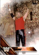2016 WWE (Topps) Kevin Nash 72