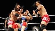 WrestleMania Tour 2011-Dublin.7