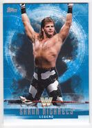 2017 WWE Undisputed Wrestling Cards (Topps) Shawn Michaels 67