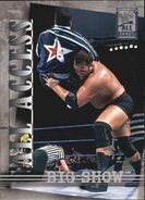 2002 WWF All Access (Fleer) Big Show 47