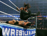 WrestleMania 23.28