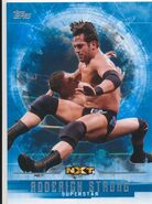 2017 WWE Undisputed Wrestling Cards (Topps) Roderick Strong 52