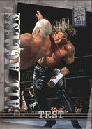 2002 WWF All Access (Fleer) Test 39