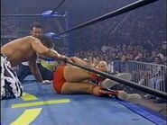 The Great American Bash 1995.00043