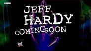 Twist of Fate The Matt & Jeff Hardy Story 29