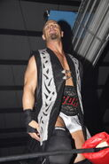 ROH Battle of the Icons 20