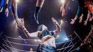 WWE Germany Tour 2016 - Mannheim 9