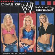 WWE Divas 2004 Wall Calendar