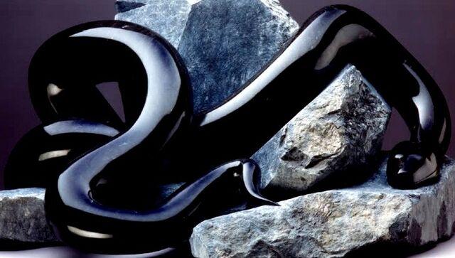 File:Black-Snake.jpg