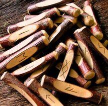 Rune sticks