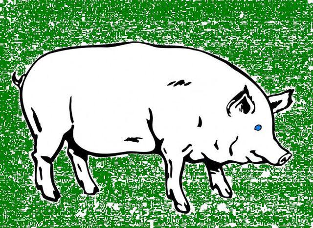 File:Pig-banner.jpg