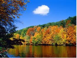 File:Nature.png
