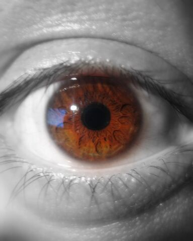 File:B&w and colour eye.jpg