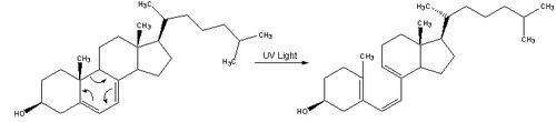 Reaction-Dehydrocholesterol-PrevitaminD3