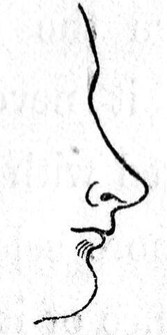 File:Class VI nose.jpg