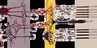 Bipolar cell of the retina