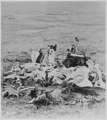 's Last Stand, 1877.png