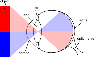 File:Eye-diagram.png