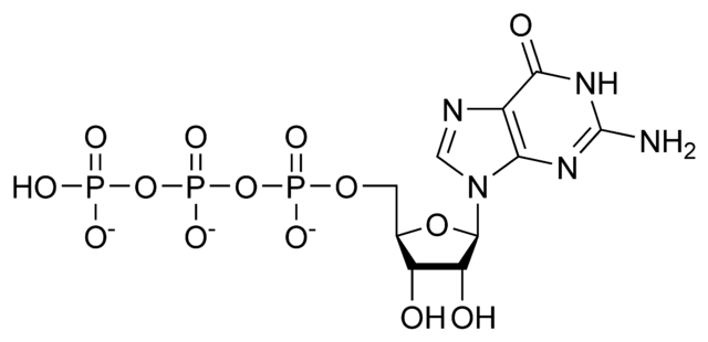 File:GTP chemical structure.png