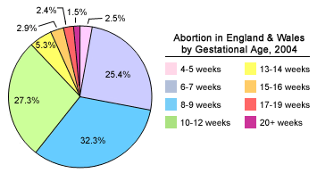 File:UKAbortionbyGestationalAgeChart2004.png