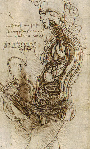 File:Coition of a Hemisected Man and Woman.jpg
