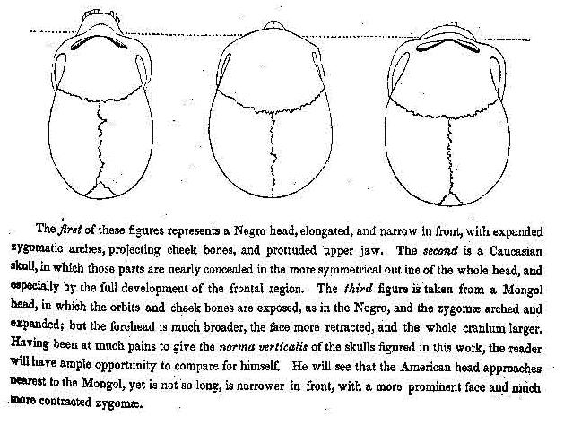 File:Morton drawing.png