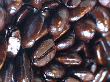 File:Espresso-roasted coffee beans.jpg