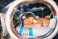 Human Infant in Incubator