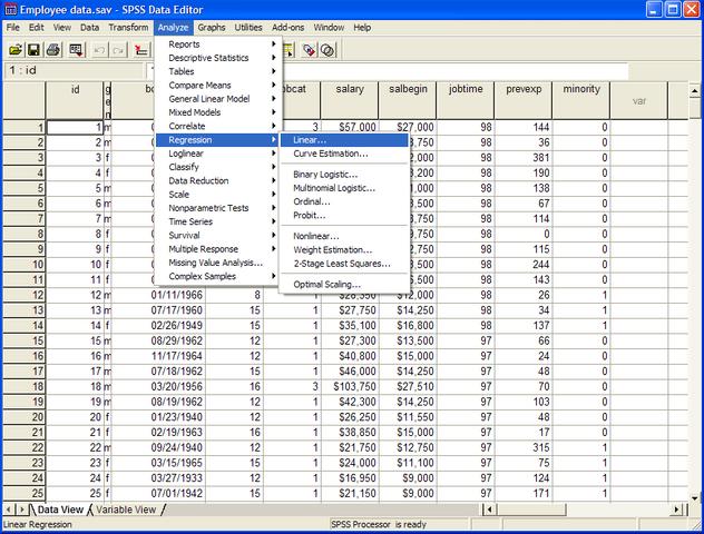 File:SPSS 13 screenshot.png