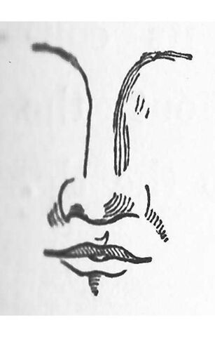 File:Class III nose.jpg