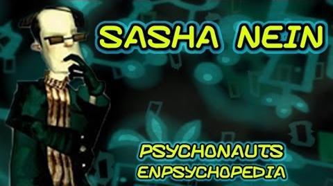 Sasha Nein Psychonauts Character Spotlight