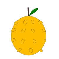 Ayometa Fruit