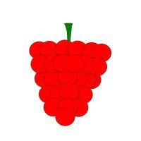 Rasp Fruit