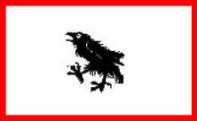 Corvinia bandeira