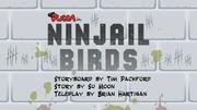 Ninjailbirds