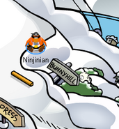White-puffle-spotted-at-ski-hill