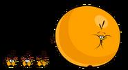 Orange bird spirites