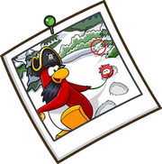 White Puffle Spotted in Rockhopper Photo