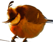 Natural angry bird baloon bird600 479