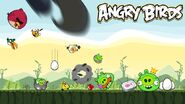 Awesome angry birds pic